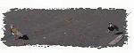 ChlVillaricaTiuqueP9080062